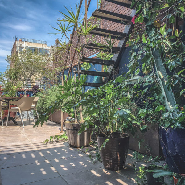 Green-Penthouse